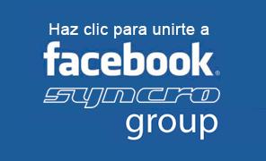Grupo Facebook Volkswagen T3 Syncro España